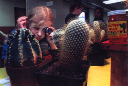 Student using jeweler's loupe to closely observe cactus