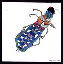 The Private Eye Student Art Designer Insect