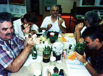 Teachers using jeweler's loupes at a Private Eye Workshop