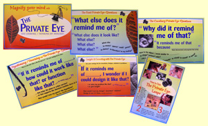 Private Eye Inquiry Poster Set
