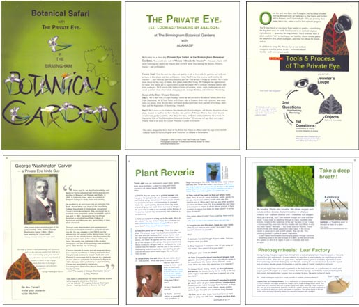 Sample pages from Botanical Safari with The Private Eye at the Birmingham Botanical Gardens